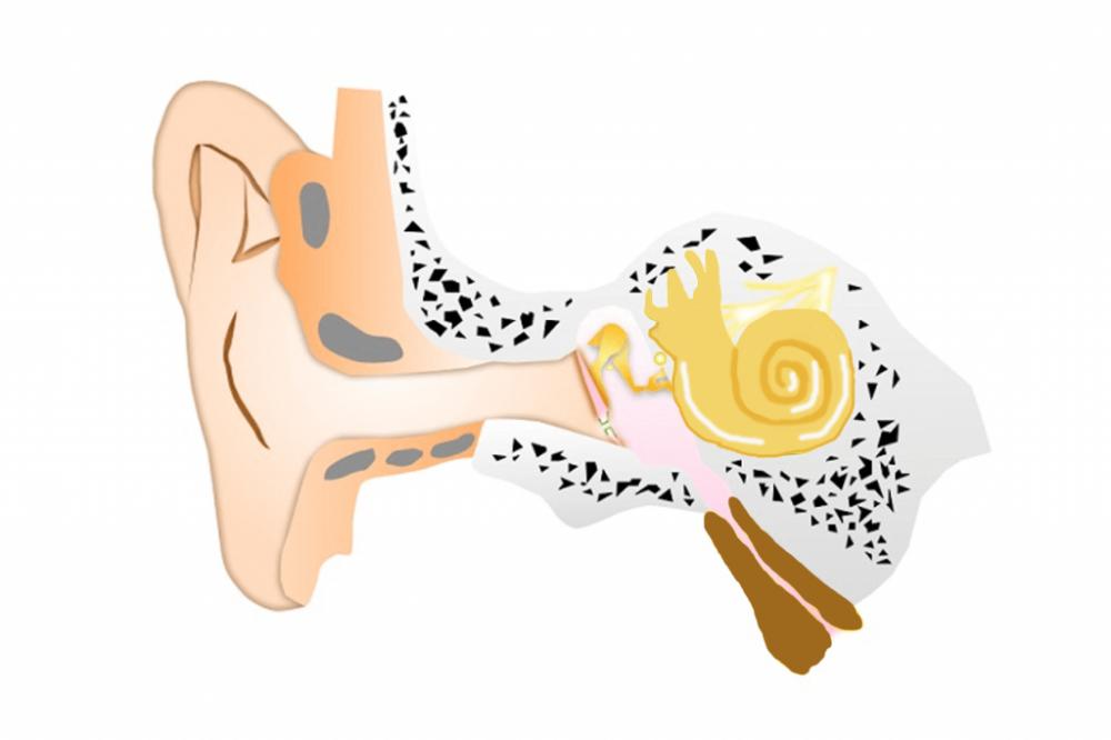滲出性中耳炎治療後
